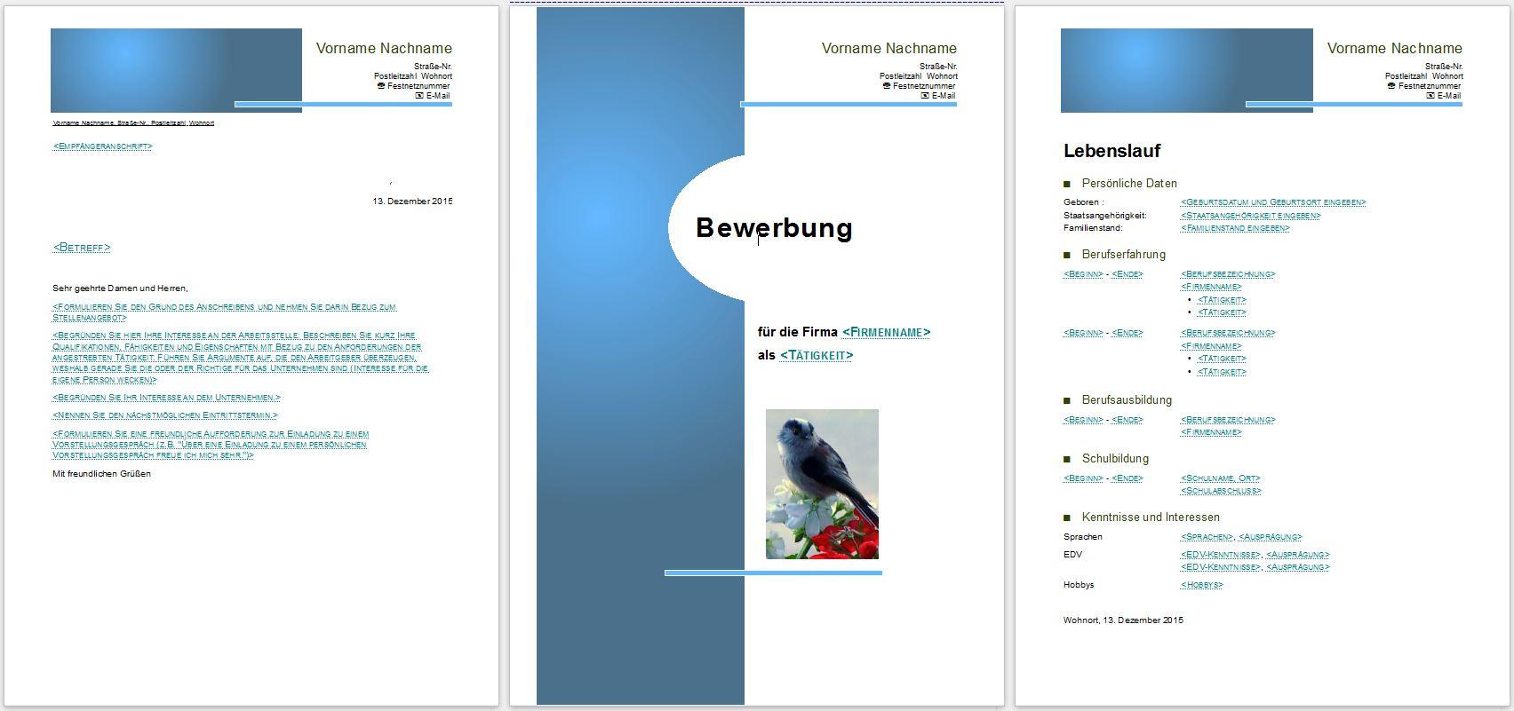 Libre Office Formatvorlage Lebenslauf