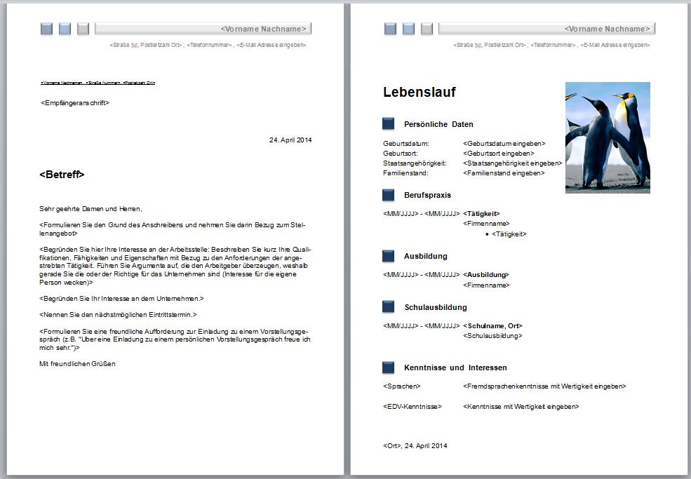 Bewerbungsvorlagen - Word 2010